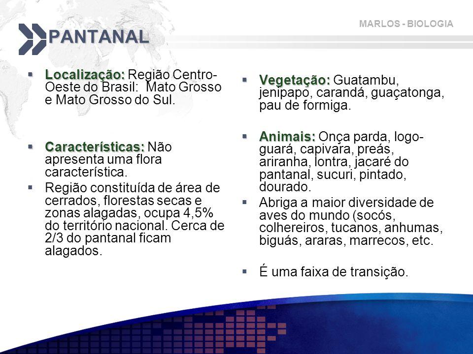 MARLOS - BIOLOGIA PANTANAL  Localização:  Localização: Região Centro- Oeste do Brasil: Mato Grosso e Mato Grosso do Sul.  Características:  Caract