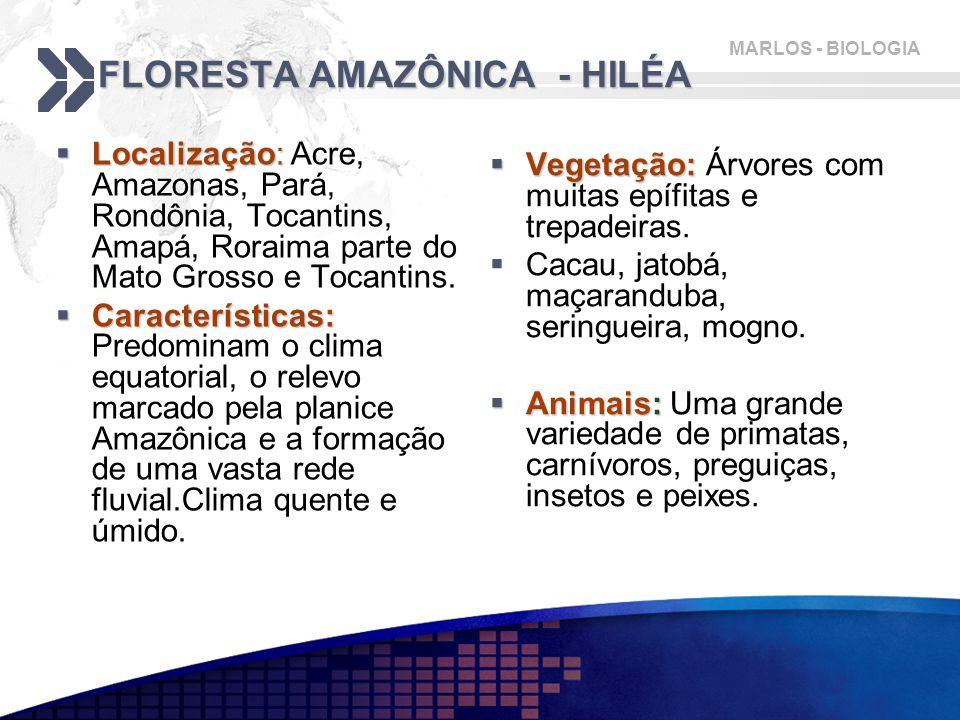 MARLOS - BIOLOGIA FLORESTA AMAZÔNICA - HILÉA  Localização:  Localização: Acre, Amazonas, Pará, Rondônia, Tocantins, Amapá, Roraima parte do Mato Grosso e Tocantins.