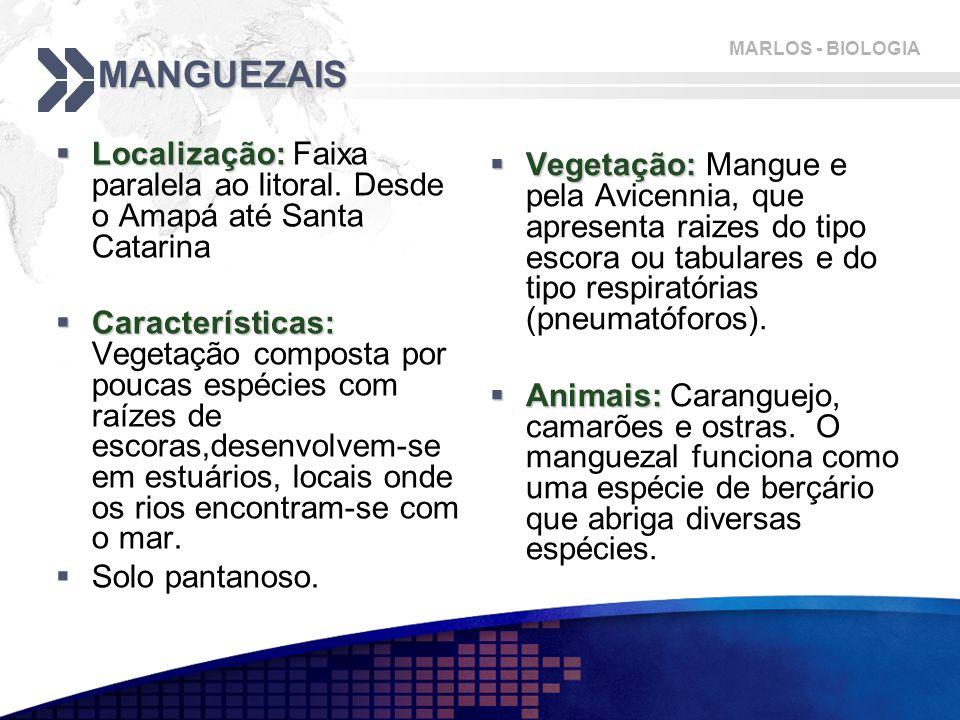 MARLOS - BIOLOGIA MANGUEZAIS  Localização:  Localização: Faixa paralela ao litoral. Desde o Amapá até Santa Catarina  Características:  Caracterís