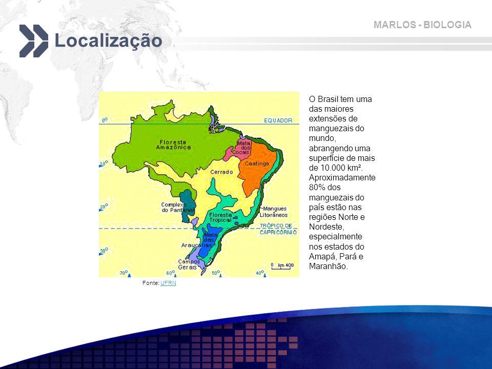 MARLOS - BIOLOGIA Localização Fonte: UFRNUFRN O Brasil tem uma das maiores extensões de manguezais do mundo, abrangendo uma superfície de mais de 10.000 km².