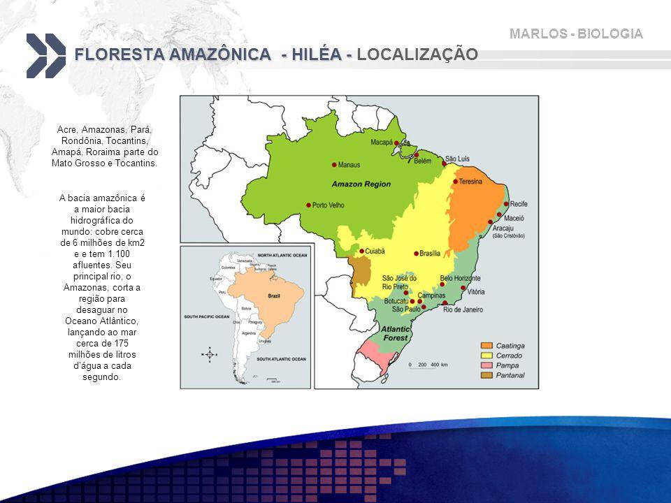 MARLOS - BIOLOGIA FLORESTA AMAZÔNICA - HILÉA - FLORESTA AMAZÔNICA - HILÉA - LOCALIZAÇÃO A bacia amazônica é a maior bacia hidrográfica do mundo: cobre cerca de 6 milhões de km2 e e tem 1.100 afluentes.