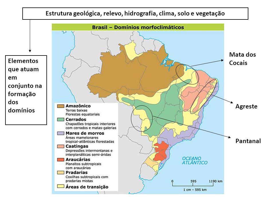 Mata dos Cocais Agreste Pantanal Estrutura geológica, relevo, hidrografia, clima, solo e vegetação Elementos que atuam em conjunto na formação dos dom