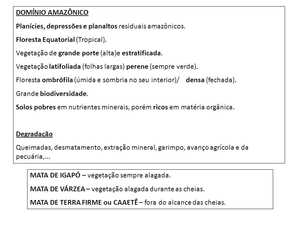 DOMÍNIO AMAZÔNICO Planícies, depressões e planaltos residuais amazônicos. Floresta Equatorial (Tropical). Vegetação de grande porte (alta)e estratific