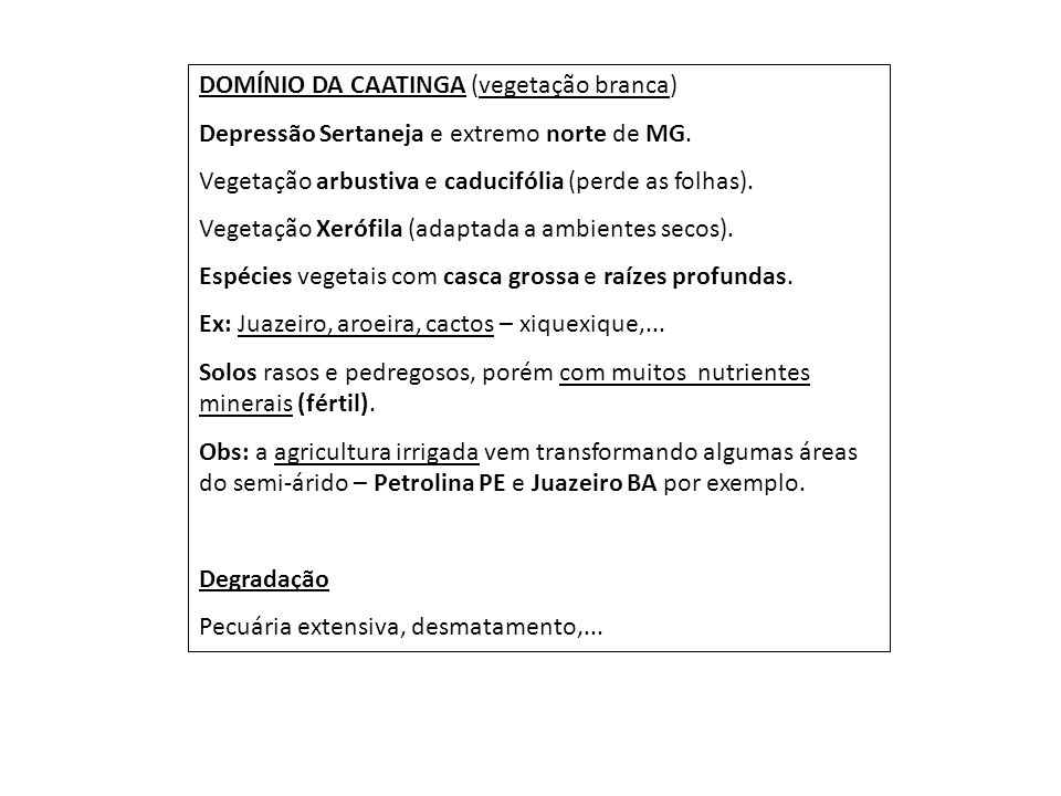 DOMÍNIO DA CAATINGA (vegetação branca) Depressão Sertaneja e extremo norte de MG. Vegetação arbustiva e caducifólia (perde as folhas). Vegetação Xeróf