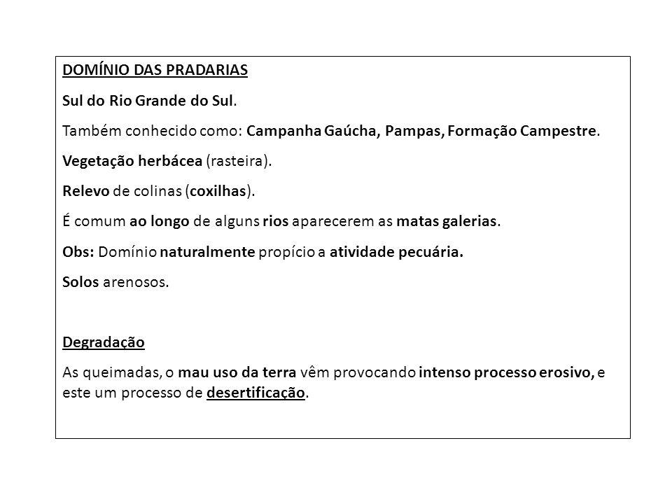 DOMÍNIO DAS PRADARIAS Sul do Rio Grande do Sul. Também conhecido como: Campanha Gaúcha, Pampas, Formação Campestre. Vegetação herbácea (rasteira). Rel