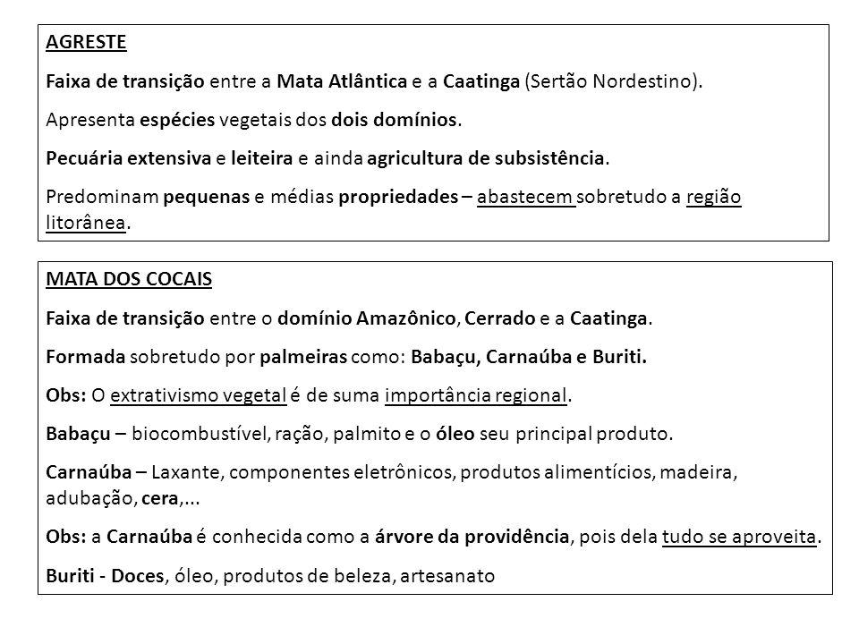 AGRESTE Faixa de transição entre a Mata Atlântica e a Caatinga (Sertão Nordestino). Apresenta espécies vegetais dos dois domínios. Pecuária extensiva