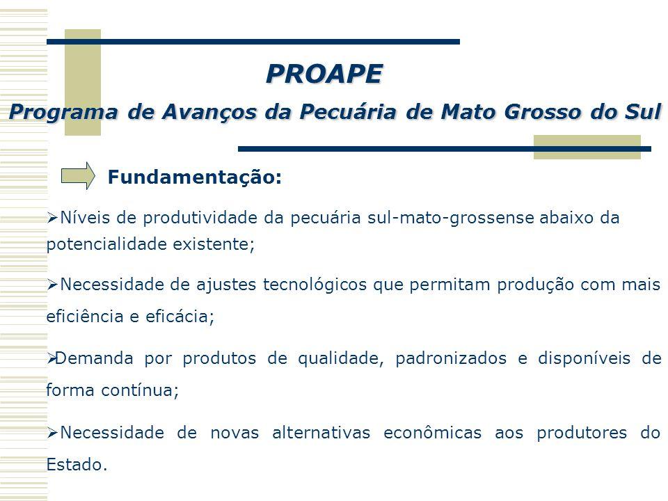 Governo do Estado de Mato Grosso do Sul Secretaria de Estado de Desenvolvimento Agrário, Produção e do Turismo - SEPROTUR Programa de Avanços da Pecuária de Mato Grosso do Sul PROAPE Campo Grande - MS 2007