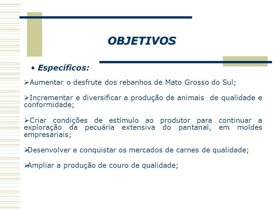 OBJETIVOS Específicos:  Aumentar o desfrute dos rebanhos de Mato Grosso do Sul;  Incrementar e diversificar a produção de animais de qualidade e conformidade;  Criar condições de estímulo ao produtor para continuar a exploração da pecuária extensiva do pantanal, em moldes empresariais;  Desenvolver e conquistar os mercados de carnes de qualidade;  Ampliar a produção de couro de qualidade;