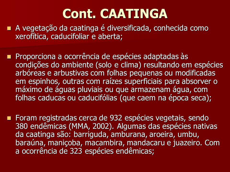 Cont. CAATINGA A vegetação da caatinga é diversificada, conhecida como xerofítica, caducifoliar e aberta; A vegetação da caatinga é diversificada, con