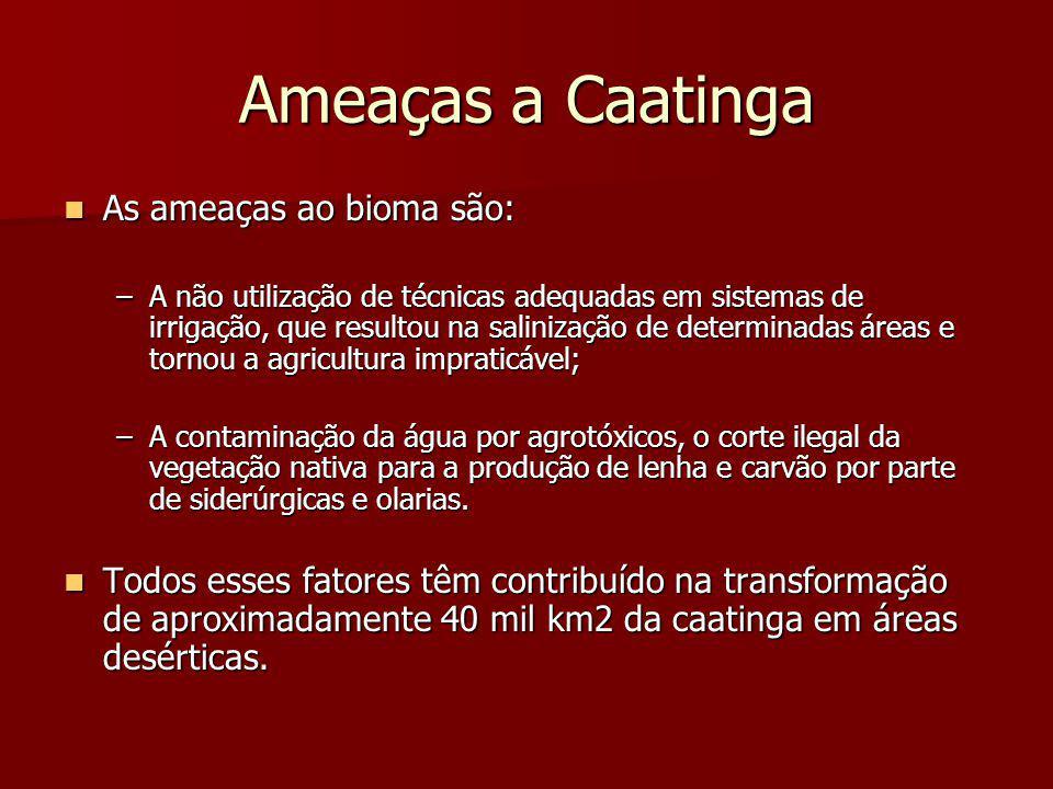 Ameaças a Caatinga As ameaças ao bioma são: As ameaças ao bioma são: –A não utilização de técnicas adequadas em sistemas de irrigação, que resultou na