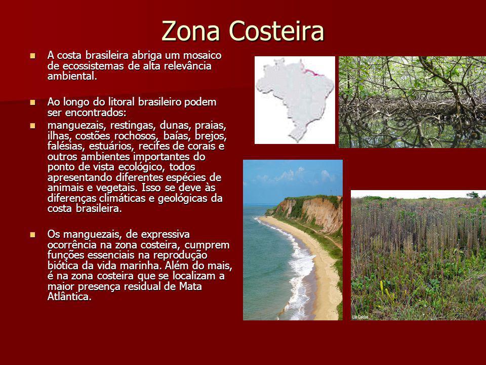 Zona Costeira A costa brasileira abriga um mosaico de ecossistemas de alta relevância ambiental. A costa brasileira abriga um mosaico de ecossistemas