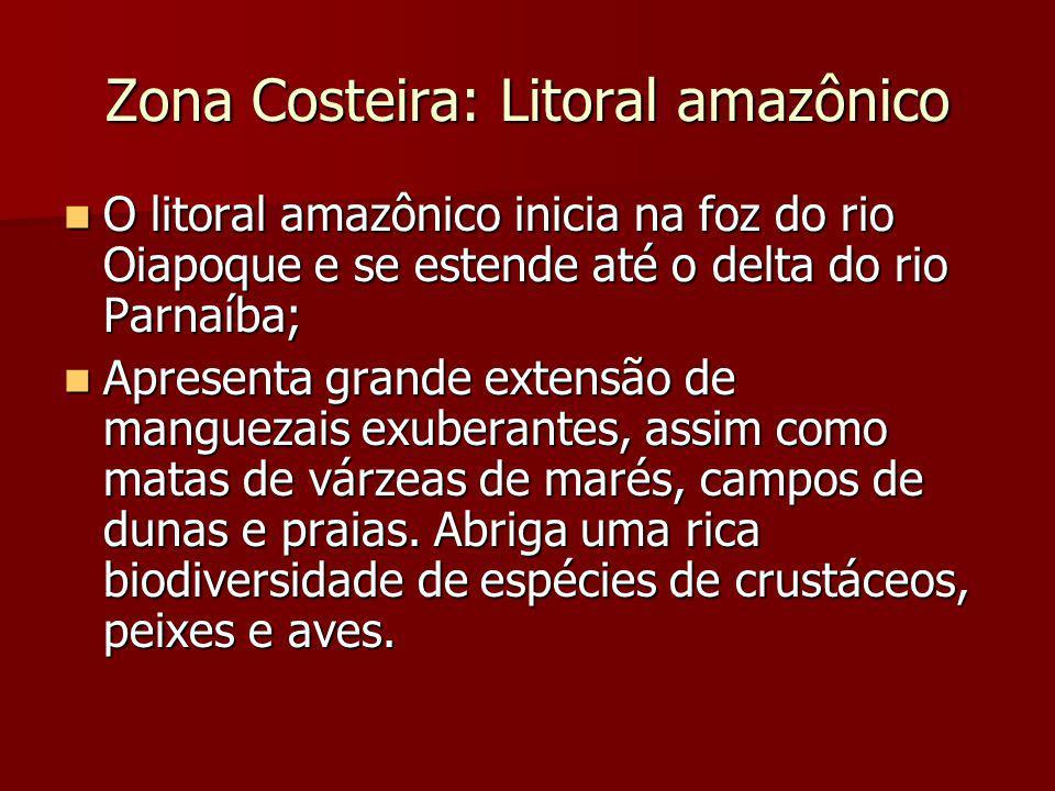 Zona Costeira: Litoral amazônico O litoral amazônico inicia na foz do rio Oiapoque e se estende até o delta do rio Parnaíba; O litoral amazônico inici