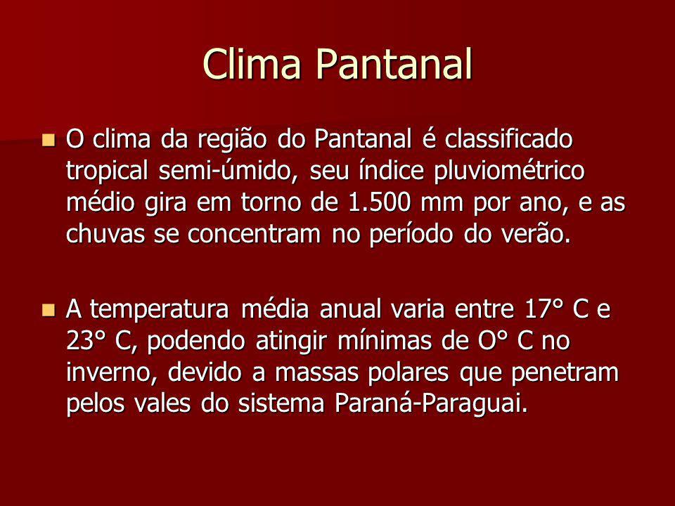 Clima Pantanal O clima da região do Pantanal é classificado tropical semi-úmido, seu índice pluviométrico médio gira em torno de 1.500 mm por ano, e a