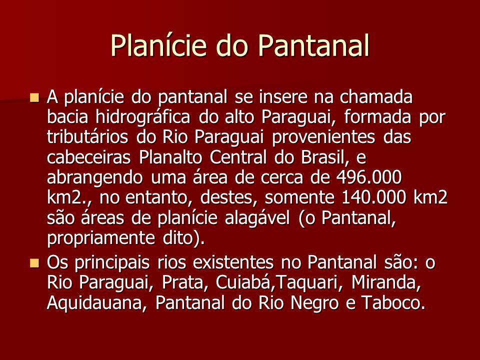 Planície do Pantanal A planície do pantanal se insere na chamada bacia hidrográfica do alto Paraguai, formada por tributários do Rio Paraguai provenie
