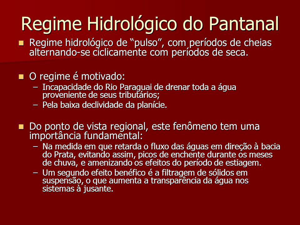 """Regime Hidrológico do Pantanal Regime hidrológico de """"pulso"""", com períodos de cheias alternando-se ciclicamente com períodos de seca. Regime hidrológi"""