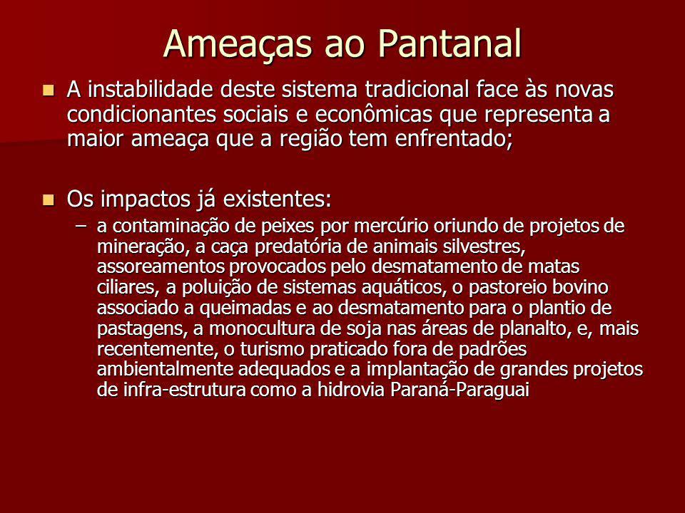 Ameaças ao Pantanal A instabilidade deste sistema tradicional face às novas condicionantes sociais e econômicas que representa a maior ameaça que a re