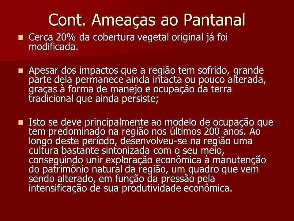 Cont. Ameaças ao Pantanal Cerca 20% da cobertura vegetal original já foi modificada. Cerca 20% da cobertura vegetal original já foi modificada. Apesar