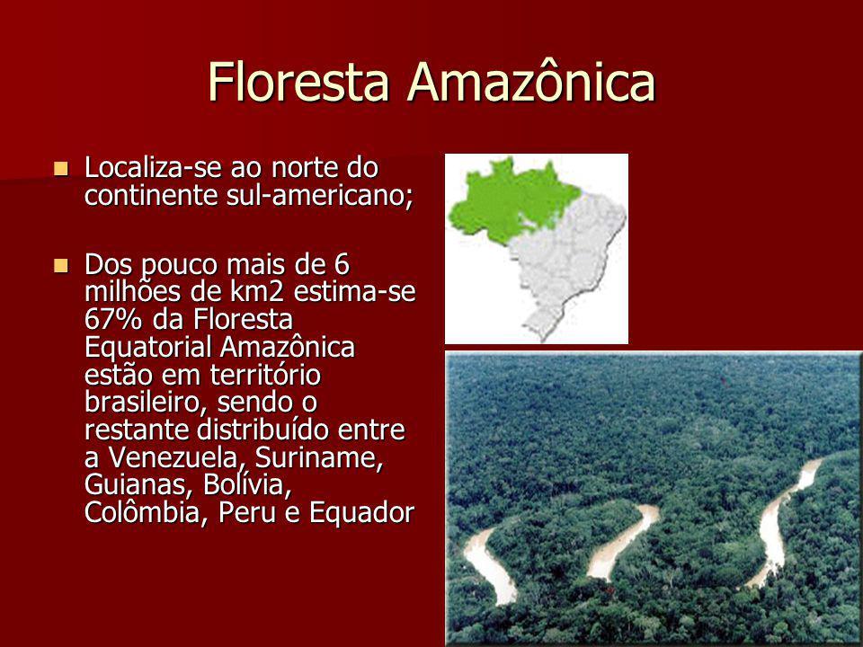 Floresta Amazônica Localiza-se ao norte do continente sul-americano; Localiza-se ao norte do continente sul-americano; Dos pouco mais de 6 milhões de