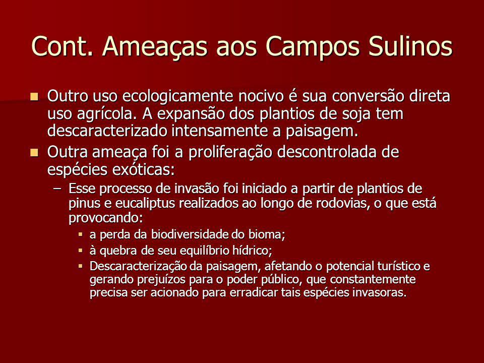 Cont. Ameaças aos Campos Sulinos Outro uso ecologicamente nocivo é sua conversão direta uso agrícola. A expansão dos plantios de soja tem descaracteri