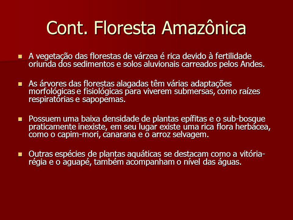 Cont. Floresta Amazônica A vegetação das florestas de várzea é rica devido à fertilidade oriunda dos sedimentos e solos aluvionais carreados pelos And
