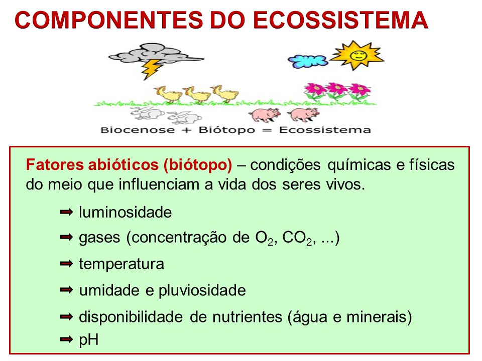 Fatores abióticos (biótopo) – condições químicas e físicas do meio que influenciam a vida dos seres vivos. luminosidade gases (concentração de O 2, CO