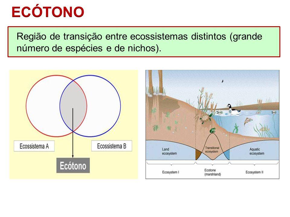 BIOSFERABIOCICLOSBIOCORASBIOMAS EPINOCICLO – ecossistemas terrestres.