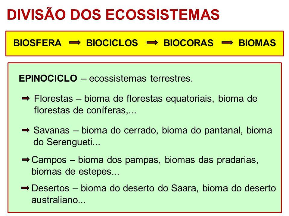 BIOSFERABIOCICLOSBIOCORASBIOMAS EPINOCICLO – ecossistemas terrestres. Savanas – bioma do cerrado, bioma do pantanal, bioma do Serengueti... Desertos –