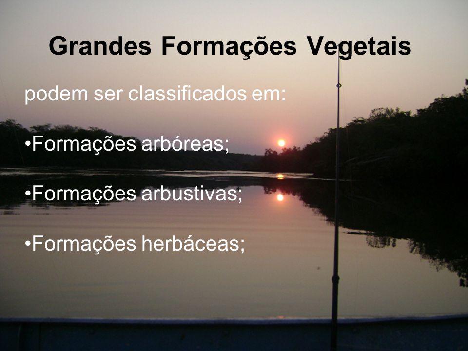 Grandes Formações Vegetais podem ser classificados em: Formações arbóreas; Formações arbustivas; Formações herbáceas;