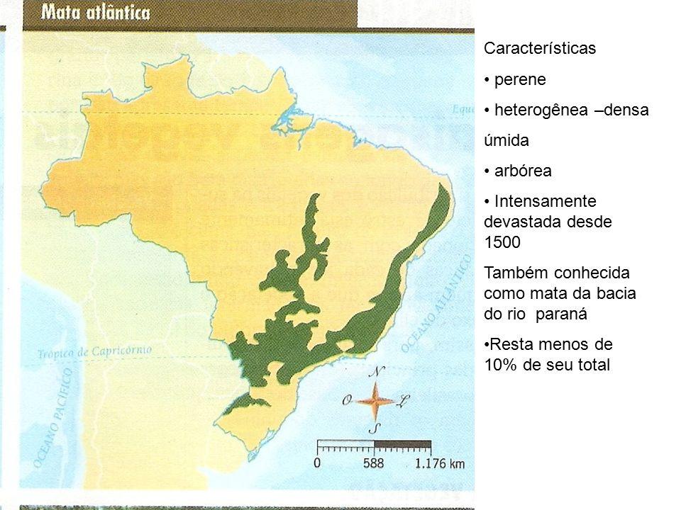 Características perene heterogênea –densa úmida arbórea Intensamente devastada desde 1500 Também conhecida como mata da bacia do rio paraná Resta menos de 10% de seu total