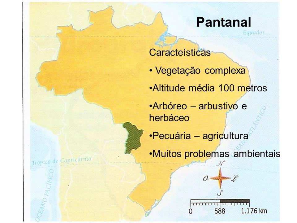 Pantanal Caracteísticas Vegetação complexa Altitude média 100 metros Arbóreo – arbustivo e herbáceo Pecuária – agricultura Muitos problemas ambientais