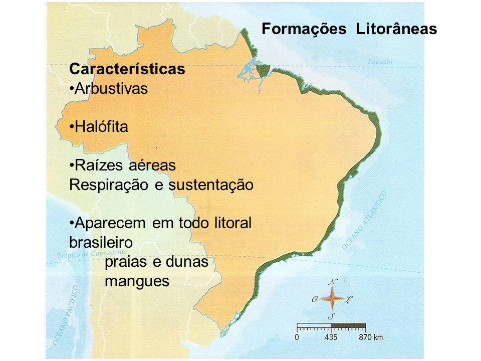 Formações Litorâneas Características Arbustivas Halófita Raízes aéreas Respiração e sustentação Aparecem em todo litoral brasileiro praias e dunas mangues