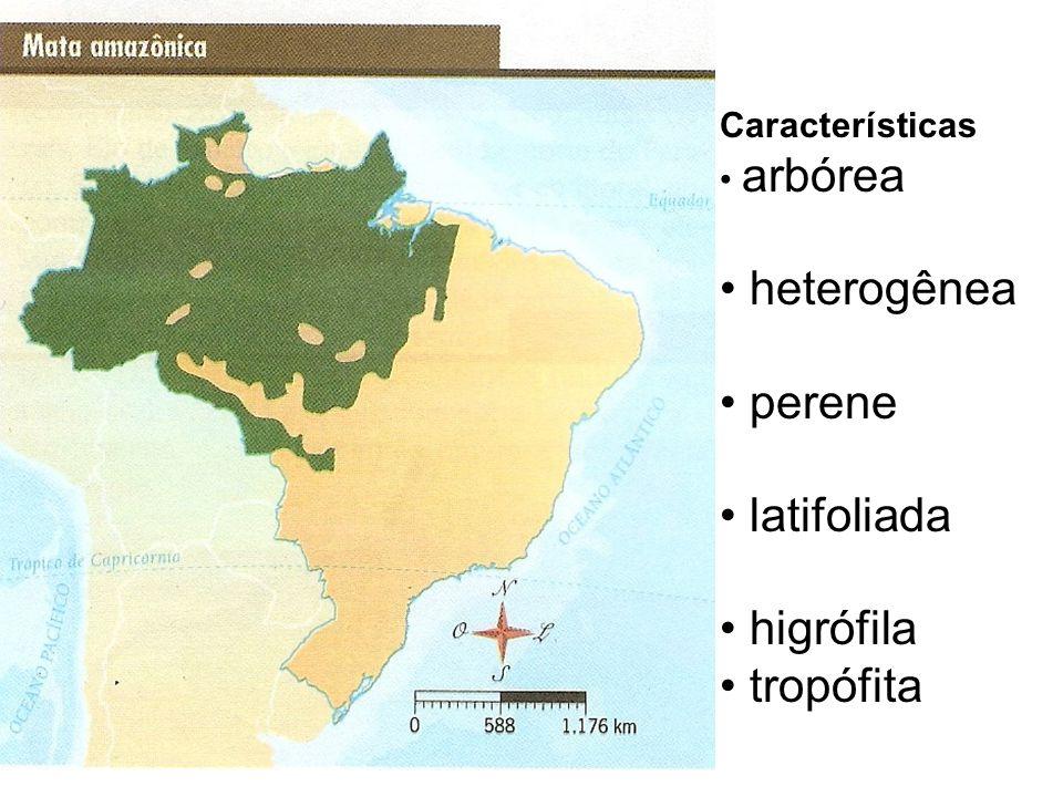 Características arbórea heterogênea perene latifoliada higrófila tropófita