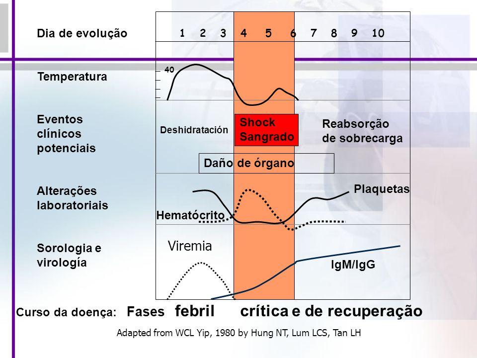 1 2 3 4 5 6 7 8 9 10 40 Viremia Curso da doença: Fases febril crítica e de recuperação Shock Sangrado Reabsorção de sobrecarga Deshidratación Daño de órgano Dia de evolução Temperatura Eventos clínicos potenciais Alterações laboratoriais Sorologia e virología Plaquetas Hematócrito IgM/IgG Adapted from WCL Yip, 1980 by Hung NT, Lum LCS, Tan LH