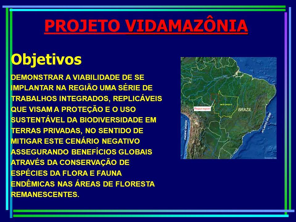 PROGRAMA PILOTO PARA A PROTEÇÃO DAS FLORESTAS TROPICAIS DO BRASIL – PPG-7 SUB-PROGRAMA DE POLÍTICA DE RECURSOS NATURAIS – SPRN PROGRAMA DE GESTÃO AMBIENTAL INTEGRADA DA REGIÃO NOROESTE DO ESTADO DE MATO GROSSO – PGAI-MT Objetivos   Difusão da temática ambiental e da participação popular   Apoio á descentralização da gestão ambiental da esfera federal para as esferas estadual e municipal   Fortalecimento dos órgãos estaduais de meio ambiente   Integração dos instrumentos de gestão ambiental como: Zoneamento-Ecológico-Econômico –ZEE, Monitoramento, Controle Ambiental e Fiscalização   Uso sustentável dos recursos naturais em áreas prioritárias nos Estados