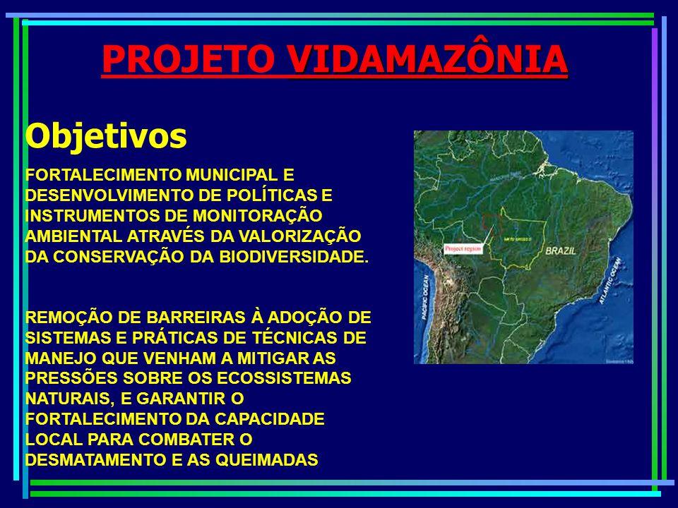 VIDAMAZÔNIA PROJETO VIDAMAZÔNIA Objetivos DEMONSTRAR A VIABILIDADE DE SE IMPLANTAR NA REGIÃO UMA SÉRIE DE TRABALHOS INTEGRADOS, REPLICÁVEIS QUE VISAM A PROTEÇÃO E O USO SUSTENTÁVEL DA BIODIVERSIDADE EM TERRAS PRIVADAS, NO SENTIDO DE MITIGAR ESTE CENÁRIO NEGATIVO ASSEGURANDO BENEFÍCIOS GLOBAIS ATRAVÉS DA CONSERVAÇÃO DE ESPÉCIES DA FLORA E FAUNA ENDÊMICAS NAS ÁREAS DE FLORESTA REMANESCENTES.