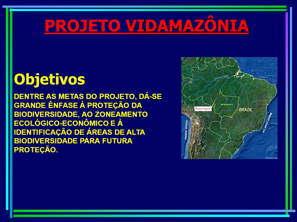 VIDAMAZÔNIA PROJETO VIDAMAZÔNIA Objetivos FORTALECIMENTO MUNICIPAL E DESENVOLVIMENTO DE POLÍTICAS E INSTRUMENTOS DE MONITORAÇÃO AMBIENTAL ATRAVÉS DA VALORIZAÇÃO DA CONSERVAÇÃO DA BIODIVERSIDADE.