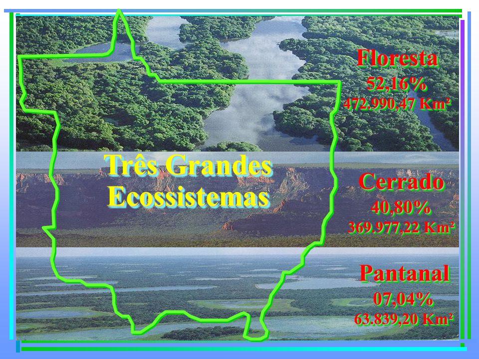 Floresta52,16% 472.990,47 Km² Floresta52,16% Cerrado40,80% 369.977,22 Km² Cerrado40,80% Pantanal07,04% 63.839,20 Km² Pantanal07,04% Três Grandes Ecossistemas