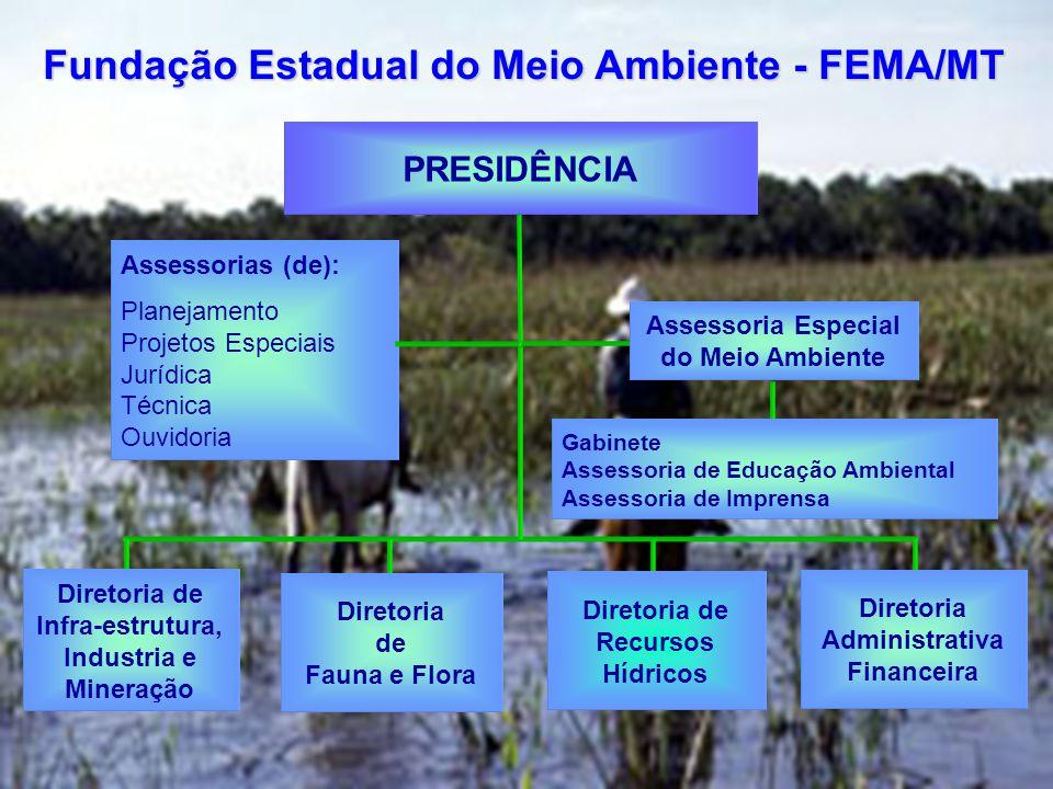Assessorias (de): Planejamento Projetos Especiais Jurídica Técnica Ouvidoria PRESIDÊNCIA Fundação Estadual do Meio Ambiente - FEMA/MT Assessoria Especial do Meio Ambiente Gabinete Assessoria de Educação Ambiental Assessoria de Imprensa Diretoria de Infra-estrutura, Industria e Mineração Diretoria de Fauna e Flora Diretoria de Recursos Hídricos Diretoria Administrativa Financeira