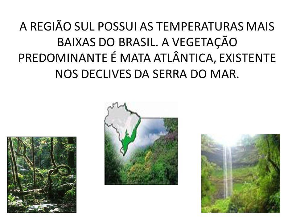 REGIÃO SUL A REGIÃO SUL,FORMADA PELOS ESTADOS DO PARANÁ, SANTA CATARINA E RIO GRANDE DO SUL.