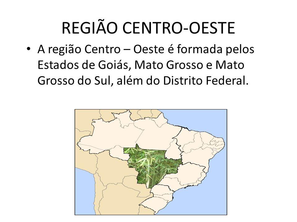 AS PRINCIPAIS CARACTERÍSTICAS DESSA REGIÃO: DESENVOLVIMENTO E INDUSTRIALIZAÇÃO. São Paulo Espírito Santo Minas Gerais Rio de Janeiro