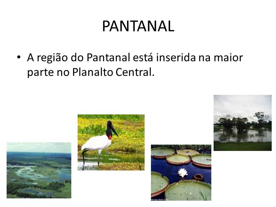 REGIÃO CENTRO-OESTE A região Centro – Oeste é formada pelos Estados de Goiás, Mato Grosso e Mato Grosso do Sul, além do Distrito Federal.