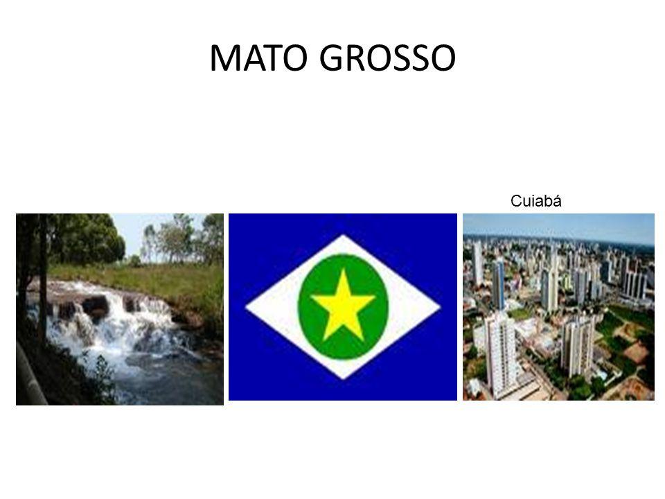 GOIÁS Cidade de Goiás Gruta da Terra Ronca São Domingos- GO Goiânia