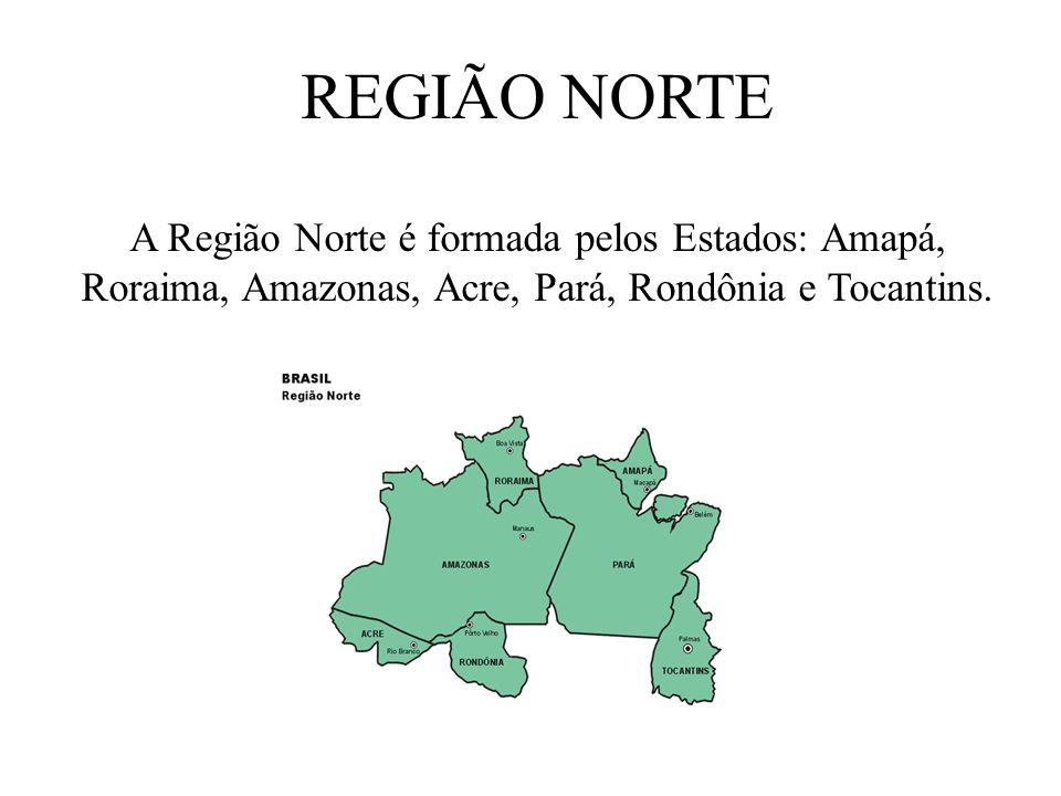REGIÕES BRASILEIRAS Por ser um país muito extenso o Brasil foi dividido em cinco regiões respectivamente. Região Norte, Nordeste, Sul, Sudeste e Centr