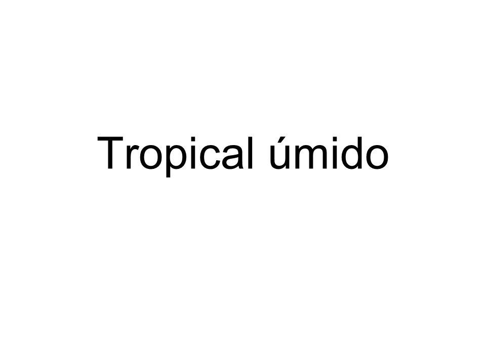 Tropical úmido