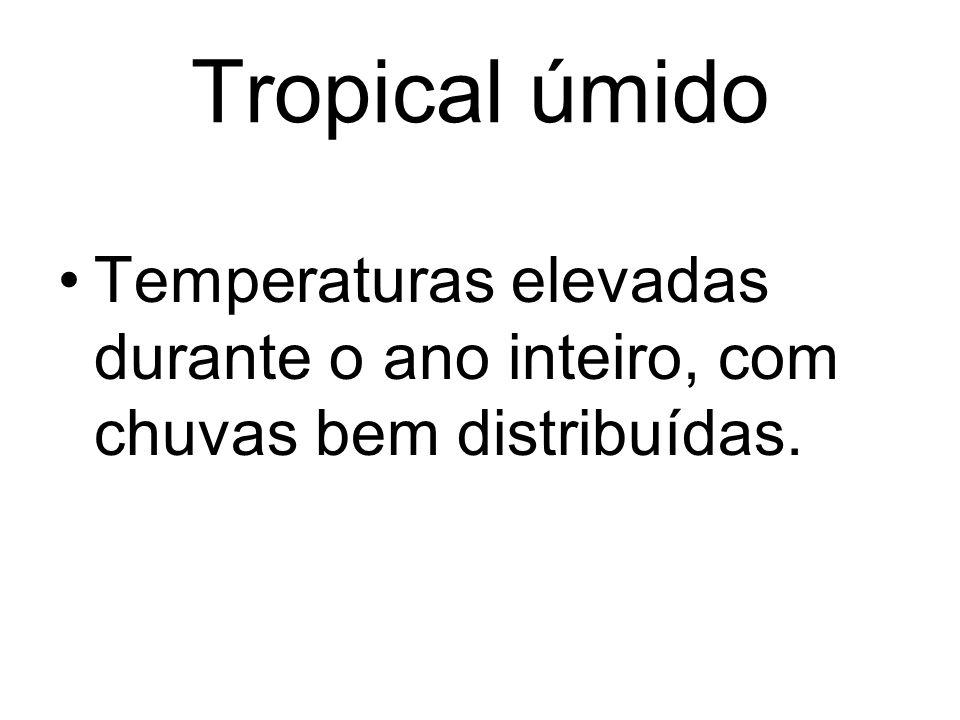 Temperaturas elevadas durante o ano inteiro, com chuvas bem distribuídas.