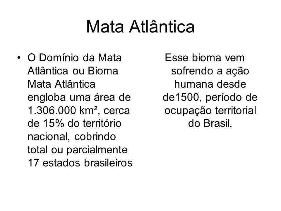 Mata Atlântica O Domínio da Mata Atlântica ou Bioma Mata Atlântica engloba uma área de 1.306.000 km², cerca de 15% do território nacional, cobrindo to