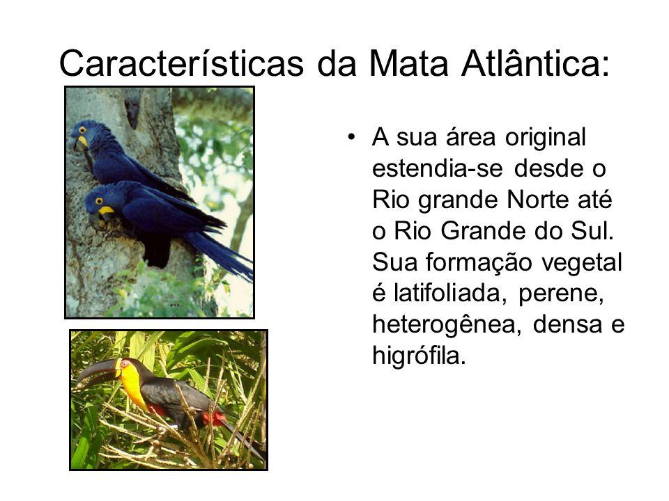 Características da Mata Atlântica: A sua área original estendia-se desde o Rio grande Norte até o Rio Grande do Sul. Sua formação vegetal é latifoliad