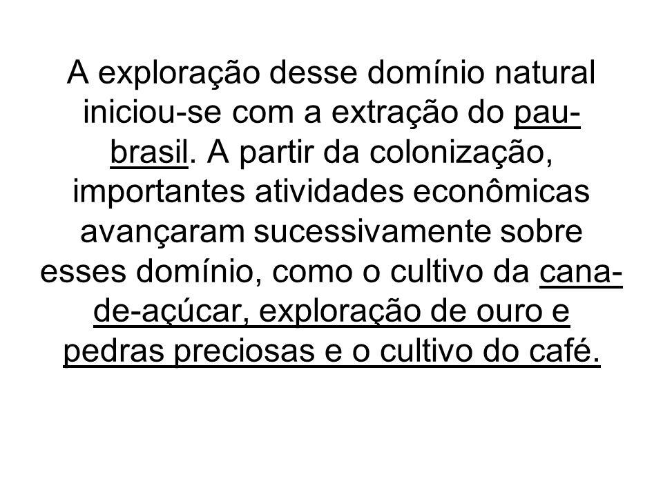 A exploração desse domínio natural iniciou-se com a extração do pau- brasil. A partir da colonização, importantes atividades econômicas avançaram suce