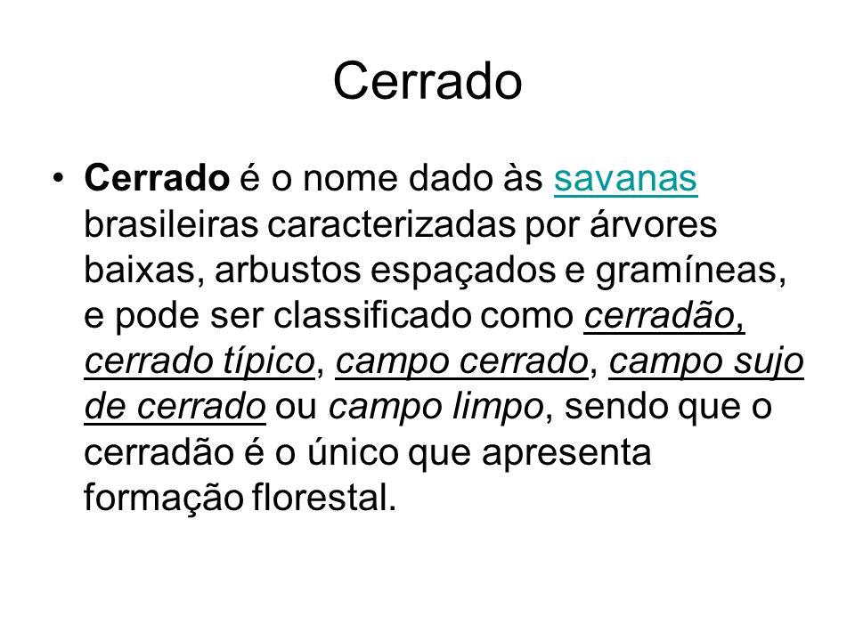 Cerrado Cerrado é o nome dado às savanas brasileiras caracterizadas por árvores baixas, arbustos espaçados e gramíneas, e pode ser classificado como c