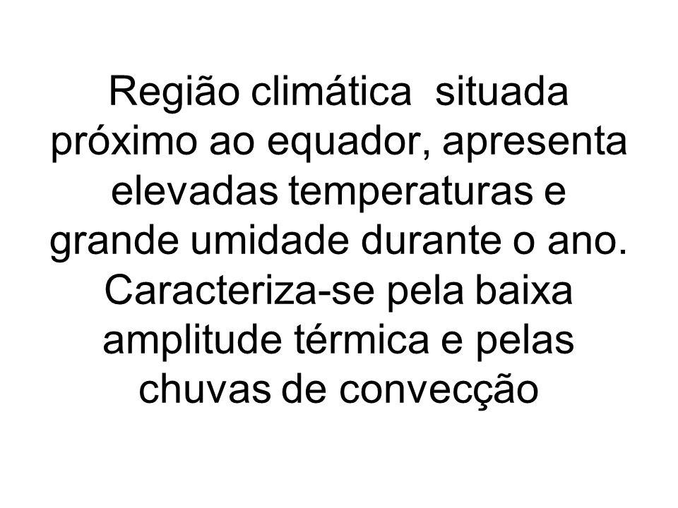 Região climática situada próximo ao equador, apresenta elevadas temperaturas e grande umidade durante o ano. Caracteriza-se pela baixa amplitude térmi